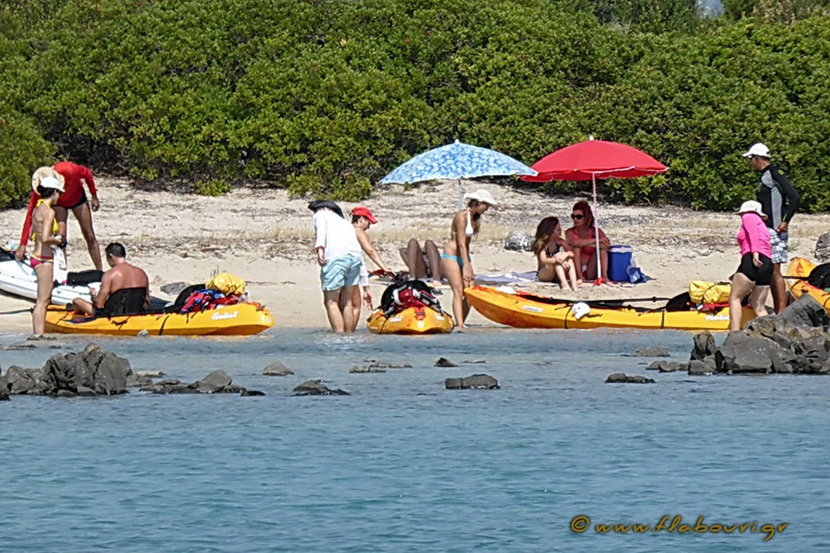 flabouri-events-2015_08_01_sea_kayak-040