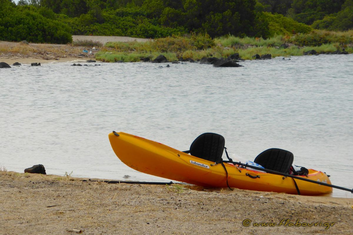 flabouri-events-2015_08_01_sea_kayak-058