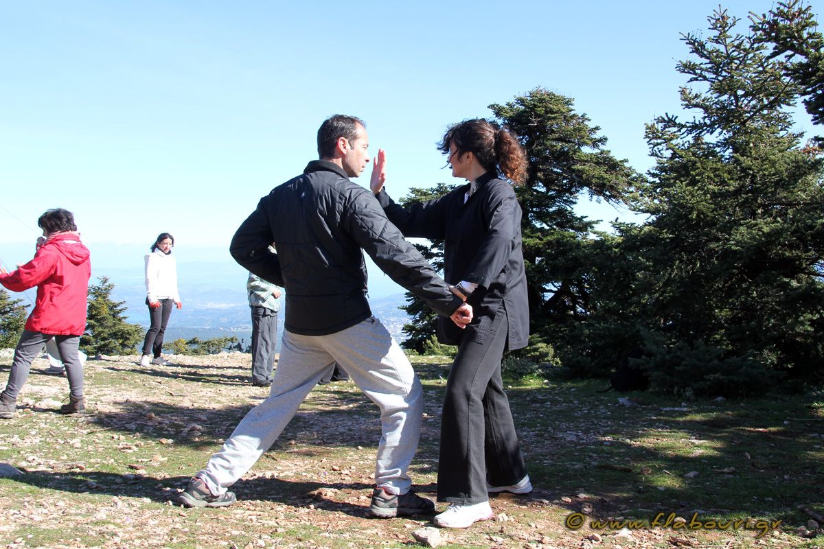 flabouri-events-2016_05_29_tai_chi-005