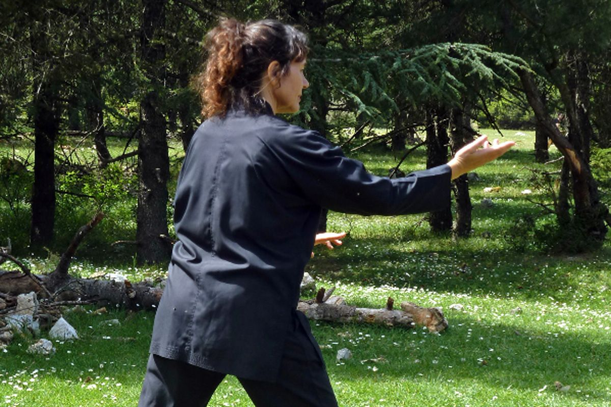 flabouri-events-2016_05_29_tai_chi-006